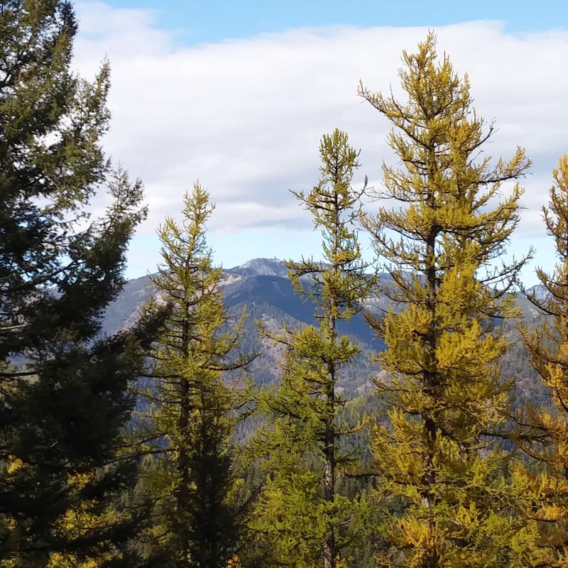 Point Six Peak view from Missoula, Montana